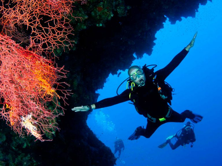 Courses - Divemaster