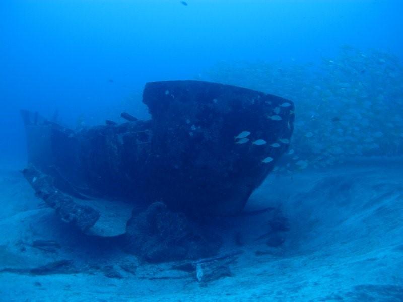 Gran Canaria Dive Sites - Veneguera wreck Como tu